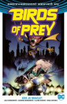 Birds of Prey 1 - Kdo je Oracle?